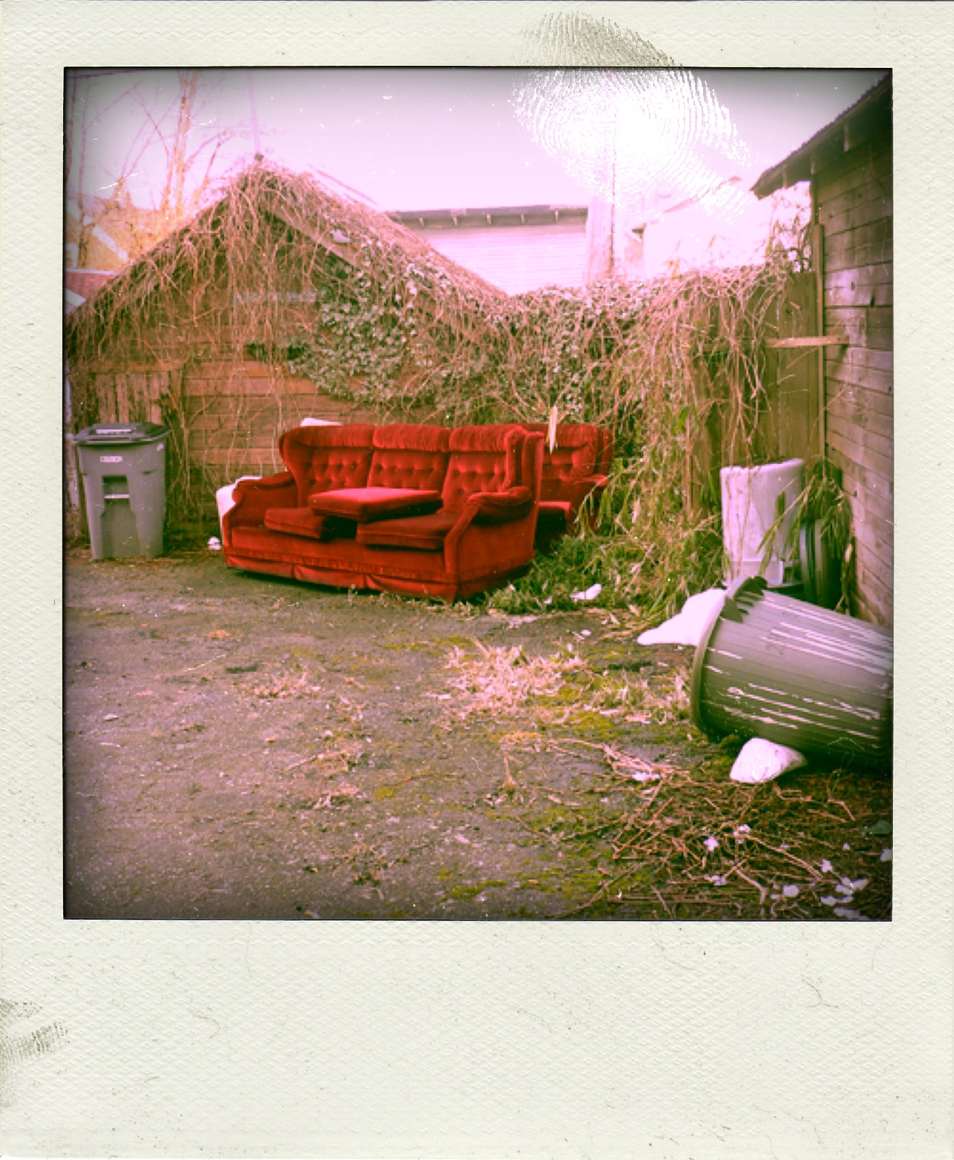 couch-pola02