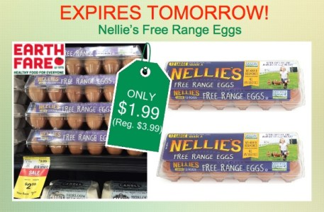 Nellie's Free Range Eggs coupon deal