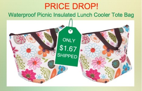 Waterproof Picnic Insulated Lunch Cooler Tote Bag