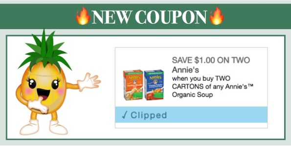 Annie's Homegrown Soup Coupon