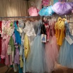 The Enchanted Fairy Dress Up Clothes