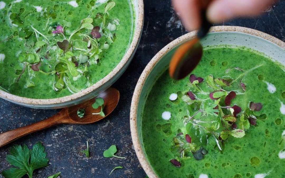 Paleo Detox Green Soup