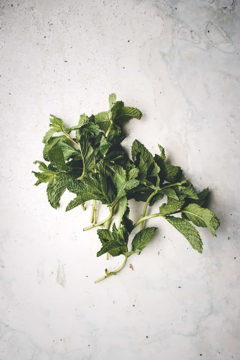 Fresh mint for watermelon salad