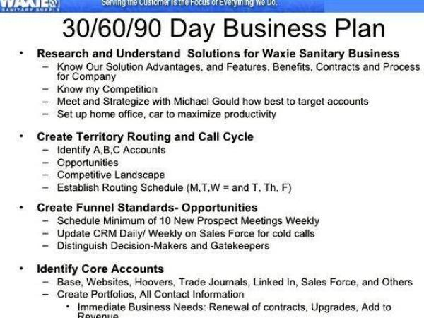 Writing a business plan for a sales manager Describe the approach that your