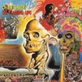 Oh-My-Gawd-150x150 Stuff You Might've Missed - Flaming Lips