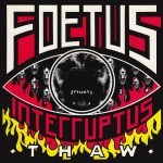 Thaw Stuff You Might've Missed - Foetus