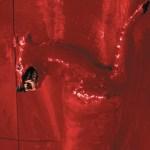 William-Basinski-A-Red-Score-In-Tile