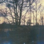 Nonconnah-The-Gloom-The-Glowing-150x150 October 2013 Releases from Silber Records