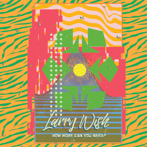 Larry-Wish-How-More-Can-You-Need Reviews - Oxykitten, Larry Wish, Lips and Ribs (Field Hymns Records)