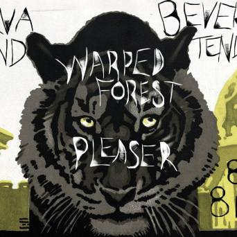 Jarva Land-Warped Forest at the ER - Poster