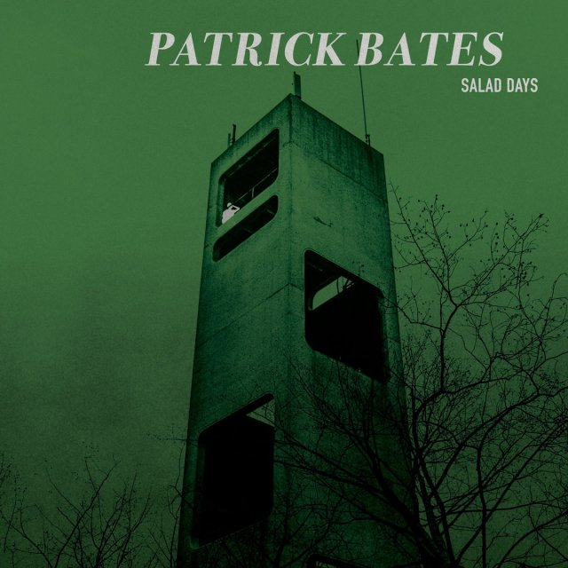 Artwork for Salad Days album by Patrick Bates