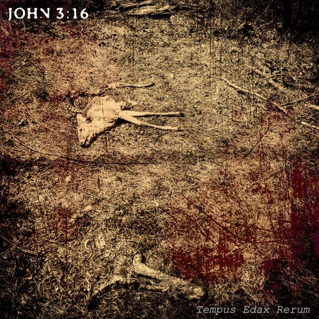 John 3 16 Tempus Edax Rerum