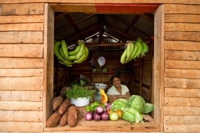 Woman in her small fruit and veg shop near Las Galeras, Samana.