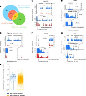 Ribosome profiling reveals pervasive and regulated stop codon readthrough in Drosophila