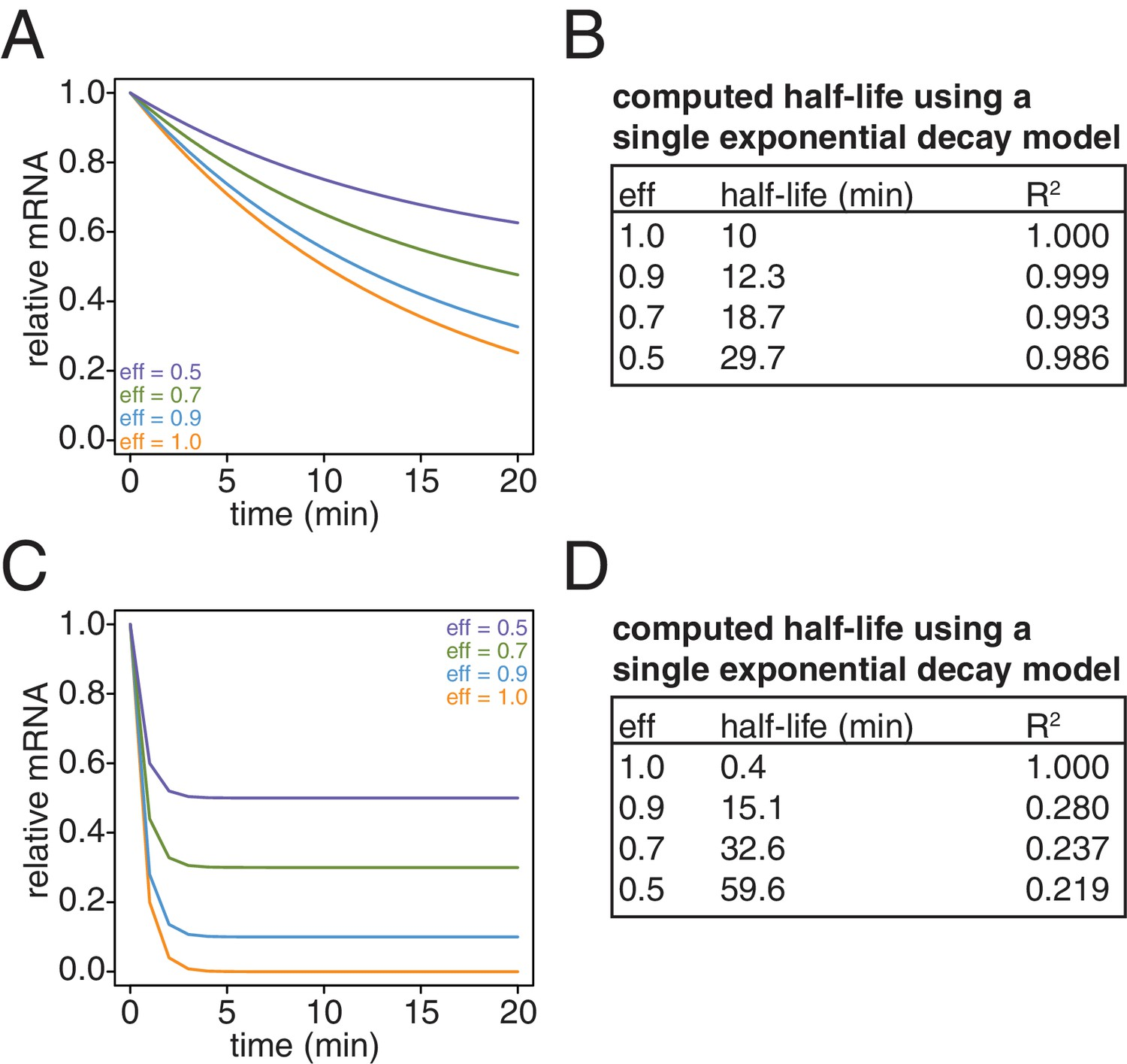 Figures And Data In Non Invasive Measurement Of Mrna Decay Reveals Translation Initiation As The