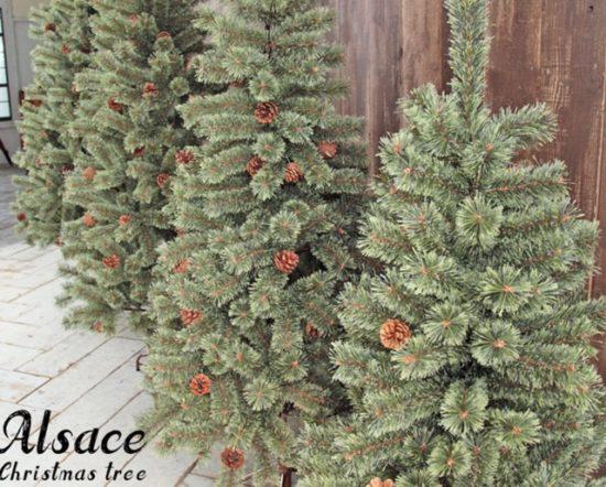 アルザスのクリスマスツリーの画像