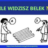 zagadka - Belki