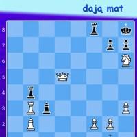 Zagadka szachowa 09