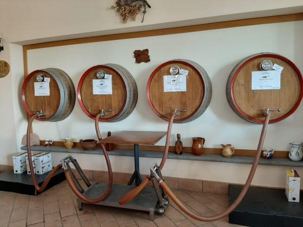 イタリアワイン 生産者から購入