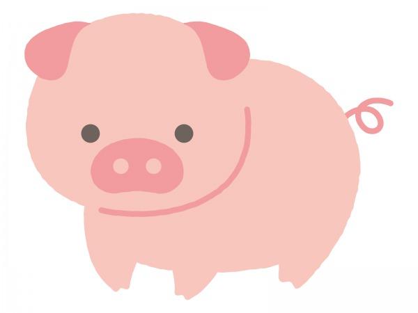 イタリア語で豚肉の部位を覚えよう