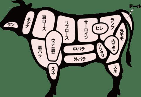 イタリア語で牛肉の部位を覚えよう