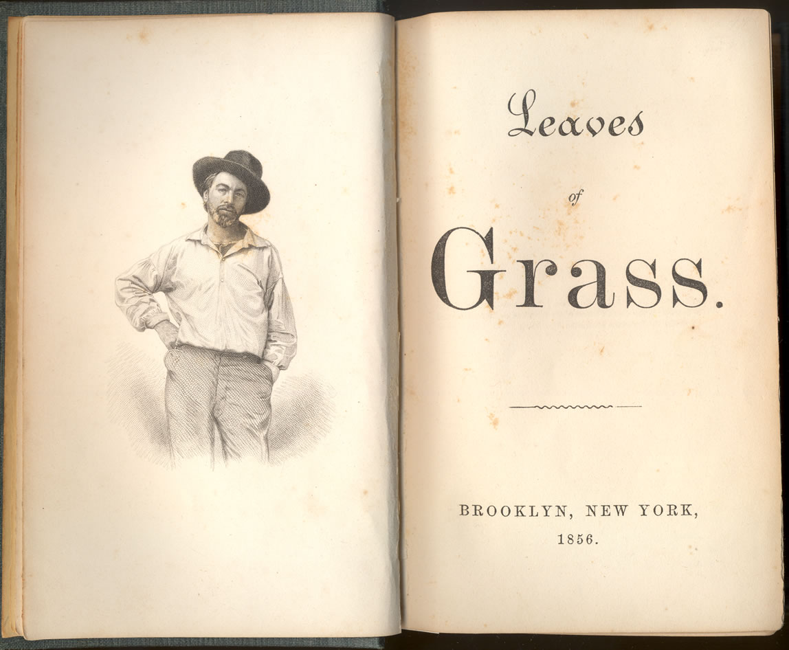 Image result for Leaves of Grass