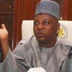 [News] : Governor Shettima denies wishing PDP dead