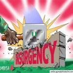 [News] : In Preparation for Post-Boko Haram Nigeria