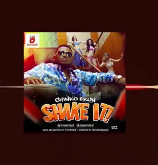 Download Chinko Ekun - Shake It