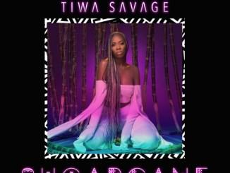 Tiwa Savage ft Wizkid Malo