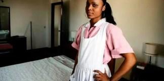 Domestic Housekeeper