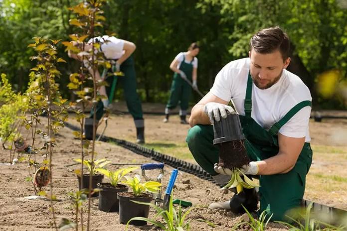 Horticultural Conservation Worker