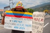 Fotografías del banderazo en Mérida - 041014 (14)