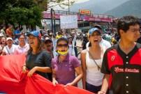 Fotografías del banderazo en Mérida - 041014 (40)