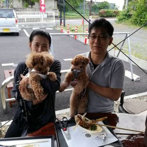 おいぬさまの神社・武蔵御嶽神社へお参りし、犬用のお守りを授けてもらった後、炭鳥ikadaにお越し下さったご夫婦です一度通りすぎた後、戻って来て下さったとの事、感謝です🤗 トイプードルのピノくん&マルチーズとトイプードルのミックスのフランちゃんは、とーっても足が長いワンちゃん達ですご来店ありがとうございましたhttp://ikadamitake.com#炭鳥 #蔵 #筏 #ikada #Tokyo #mitake #御岳 #御岳山 #mitakesan #御岳山ロックガーデン #武蔵御嶽神社 #多摩川 #御岳渓谷 #奥多摩フィッシングセンター #奥多摩 #ブドウ山椒 #おにぎり #味玉 #tasty #バイク #ロードバイク #カヌー #カヤック #リバーSUP #デッドエンド #ジムニー #ペット可 #トイプードル #マルプー