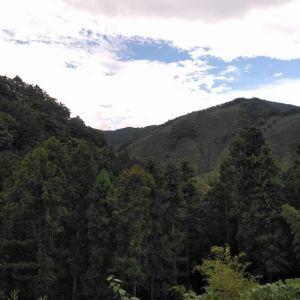 今日は晴れたり曇ったり山の緑が目にしみます⛰️ http://ikadamitake.com営業時間11~17時(夏季)木曜定休(祭日は営業)※むかし鳥、ばくだんは数に限りがございます。1個からお取り置き致します♪Tel.0428-85-8726#炭鳥 #蔵 #筏 #ikada #むかし鳥 #mitake #tokyo #御岳 #御岳山 #御岳山ロックガーデン #武蔵御嶽神社 #多摩川 #御岳渓谷 #御岳ランチ #奥多摩フィッシングセンター #奥多摩 #日原鍾乳洞 #味玉 #バイク #ロードバイク #カヌー #カヤック #リバーSUP #ラフティング #デッドエンド #ペット可