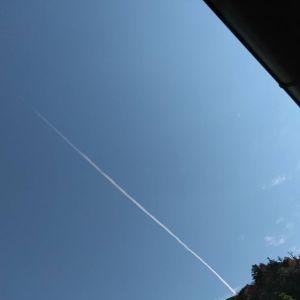 炭鳥ikadaの上空には、時間差で色々な飛行機雲が出来ます。きっと飛行機の通り道なんでしょうねhttp://ikadamitake.com営業時間・4月〜12月 11〜17時  1月〜  3月 11〜16時金曜定休(祭日は営業)※むかし鳥、ばくだんは数に限りがございます。1個からお取り置き致します♪Tel.0428-85-8726#むかし鳥 #炭鳥ikada #ばくだん #mitake #tokyo #御岳 #御嶽駅 #御岳山 #御岳山ロックガーデン #武蔵御嶽神社 #御岳神社 #多摩川 #御岳渓谷 #東京アドベンチャーライン #御岳ランチ #奥多摩フィッシングセンター #奥多摩 #日原鍾乳洞 #okutama #バイク #ロードバイク #カヌー #カヤック #riversup  #デッドエンド #ペット可 #飛行機雲