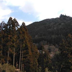 昨日は都心で初雪を観測したとか御岳では全く降る事もなく、今朝は昨朝より暖かかったです🤗http://ikadamitake.com営業時間・1月〜  3月 11〜16時  4月〜12月 11〜17時金曜定休(祭日は営業)※むかし鳥、ばくだんは数に限りがございます。1個からお取り置き致します♪Tel.0428-85-8726#むかし鳥 #炭鳥ikada #ばくだん #mitake #tokyo #御岳 #御嶽駅 #御岳山 #御岳山ロックガーデン #武蔵御嶽神社 #御岳神社 #多摩川 #御岳渓谷 #東京アドベンチャーライン #御岳ランチ #奥多摩フィッシングセンター #奥多摩 #日原鍾乳洞 #okutama #バイク #ロードバイク #カヌー #カヤック #riversup  #デッドエンド #ペット可 #朝の空