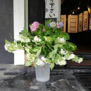 今年も斜めお向かいさんに、沢山の #アジサイ を頂きました花瓶があまりないので、バサッと入れただけですがアジサイの美しさは梅雨の楽しみの一つですよね🤗http://ikadamitake.com 営業時間4月から12月 11~17時1月から3月 11~16時金曜定休(祭日は営業)※むかし鳥、ばくだんは数に限りがございます。1個からお取り置き致します♪Tel.0428-85-8726#むかし鳥 #体験型 #炭鳥ikada #ばくだん #mitake #御岳 #御岳山 #御岳山ロックガーデン #武蔵御嶽神社 #御岳渓谷 #東京アドベンチャーライン #御岳ランチ #奥多摩フィッシングセンター #奥多摩 #日原鍾乳洞 #イマタマ #バイク #ロードバイク #カヌー #カヤック #リバーSUP #ラフティング #御岳ボルダー #ペット可 #紫陽花 #hydrangea