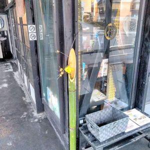お正月に店主が門松を作りましたが、使わなかった竹がありました。青々として捨てるのが惜しいので、花入れにしてみましたhttp://ikadamitake.com営業時間・1月〜3月 11〜16時4月〜12月 11〜17時金曜定休(祭日は営業)Tel.0428-85-8726#むかし鳥 #体験型 #炭鳥ikada #ばくだん #mitake #御岳 #御嶽駅 #御岳山 #御岳山ロックガーデン #武蔵御嶽神社 #御岳神社 #御岳渓谷 #御岳ランチ  #青梅ランチ #奥多摩フィッシングセンター #奥多摩 #奥多摩湖 #バイク #ロードバイク #サイクリング #カヌー #カヤック #ラフティング #riversup #御岳ボルダー #ペット可 #竹の花入れ