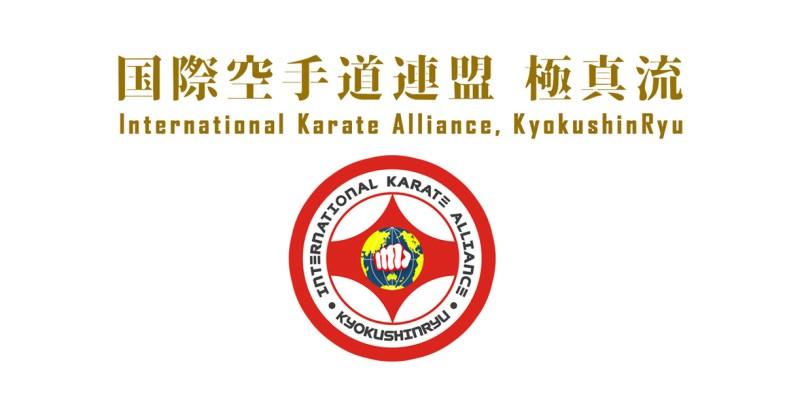 Картинки по запросу Kyokushin-ryu