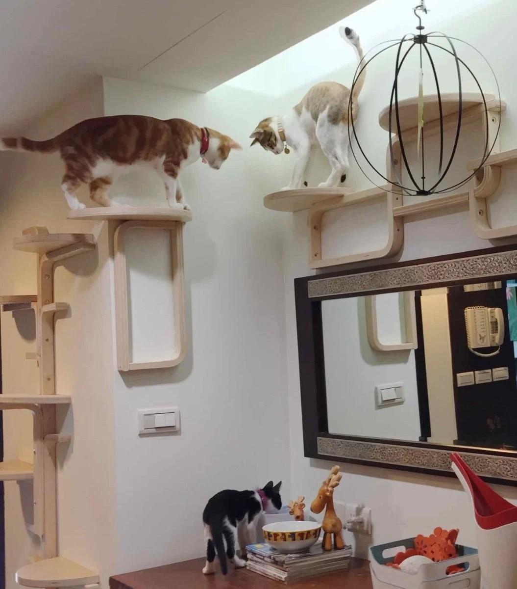 Cat Tree By Frosta X Ikea Hackers