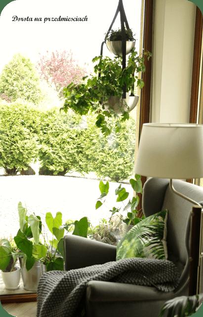 DIY hanging plant pot with BLANDA BLANK