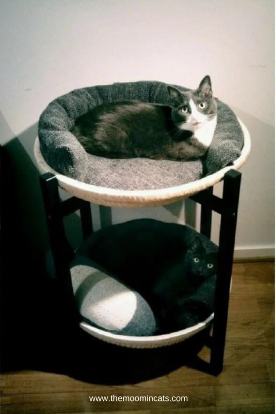 The Moomincats Blog, cat bed, IKEA hack, catification, TRENDIG