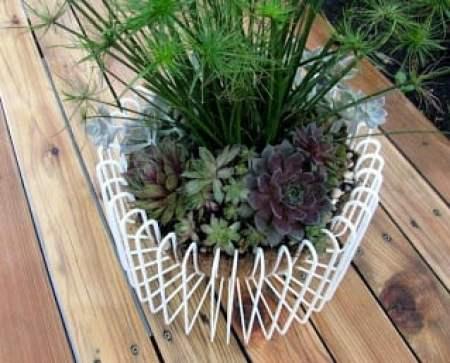 Ikea fruit bowl for succulents