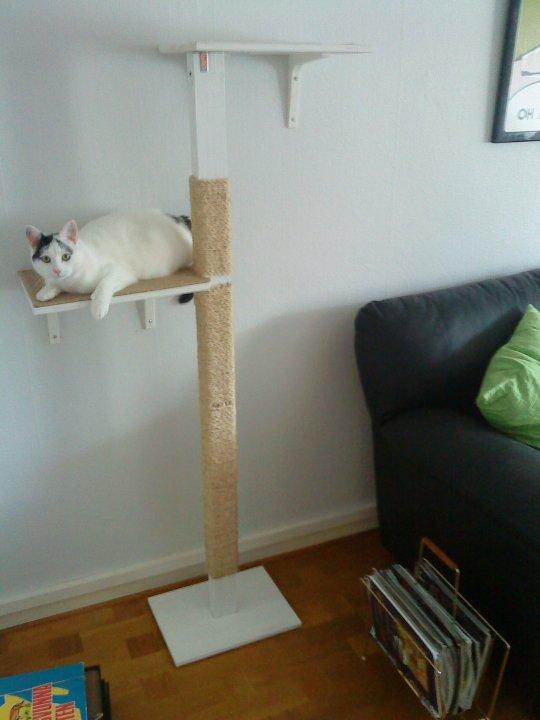 Kitty Cat S Clawpole Ikea Hackers