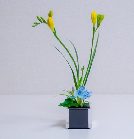 小さい自由花(フリージア/ブルースター/ミスカンサス)