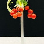 Arrangement végétal