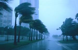 台風 対策 方法 家 車、2