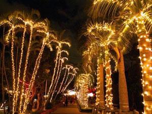 12月 沖縄 旅行 気温 服装 イベント、7